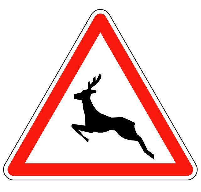 Panneau passage d'animaux sauvages