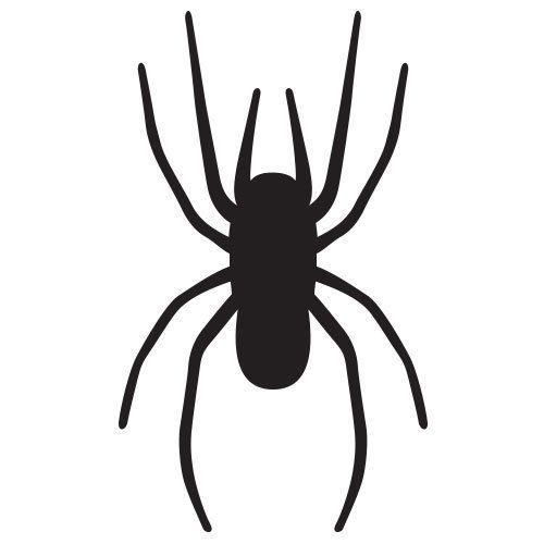 pochoir araignée gratuit à imprimer