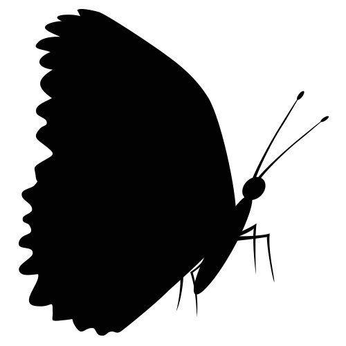 pochoir papillon 12 gratuit à imprimer