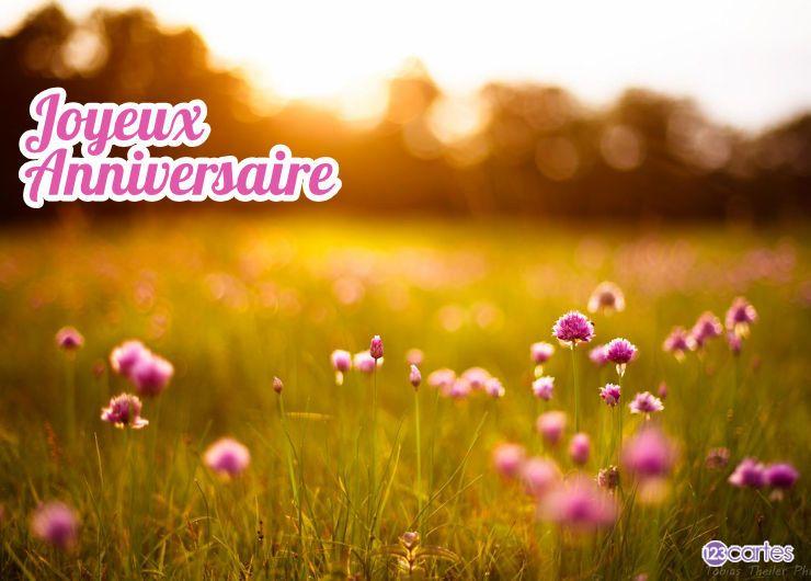 Carte anniversaire champ de fleurs