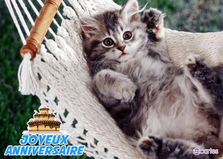 Carte anniversaire chat allongé dans un hamac