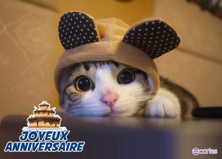 carte anniversaire chat mickey
