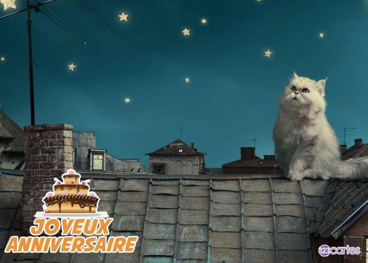 carte anniversaire chat sur le toit