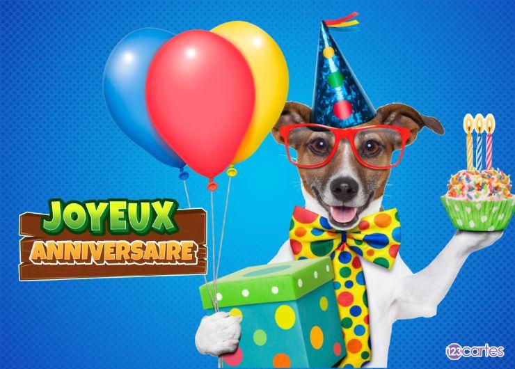 chien Jack Russell avec des lunettes qui porte une boîte cadeau, des ballons gonflable et un petit gâteau avec des bougies d'anniversaire