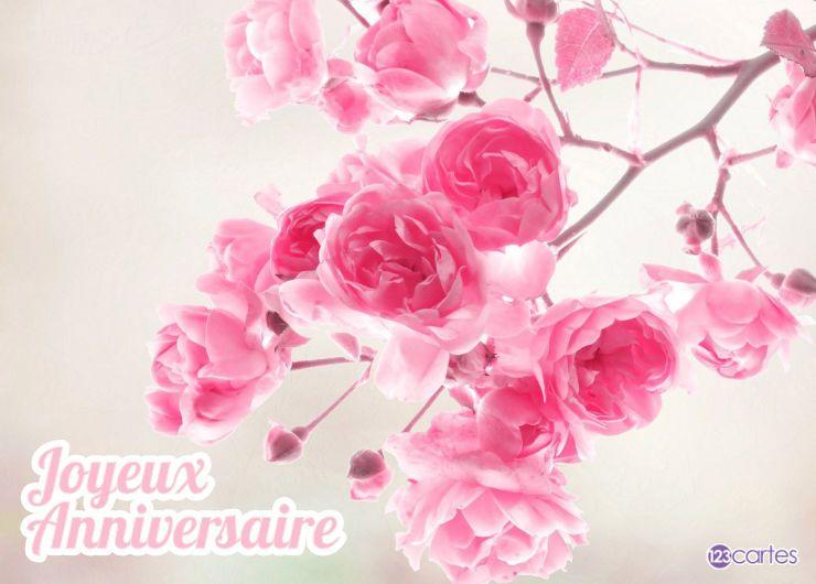 branche avec des fleurs roses
