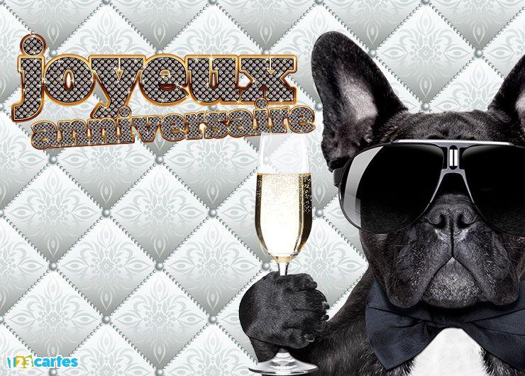 chien avec des lunettes de soleil qui tient une flûte à champagne