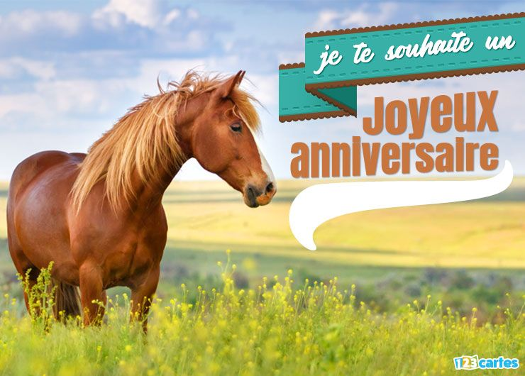 carte anniversaire cheval balade solo en pleine nature