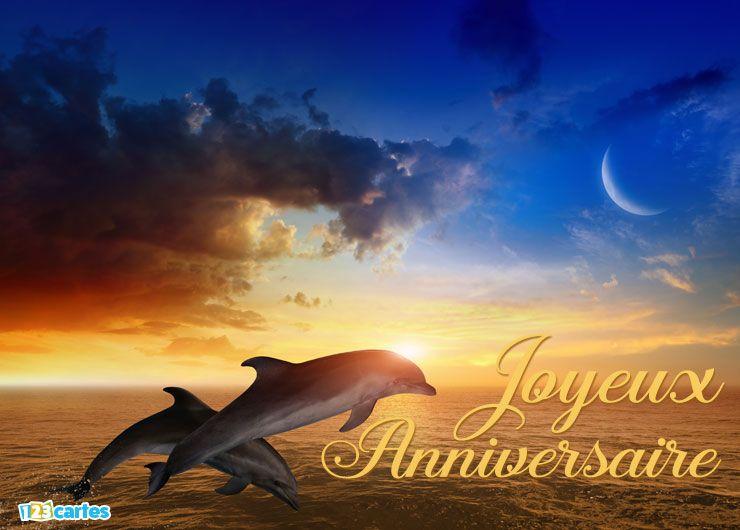 carte joyeux anniversaire dauphins au coucher de soleil