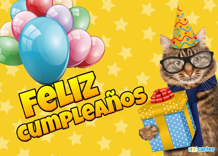 chat avec des lunettes et un chapeau pointu et qui tient dans sa patte une boîte cadeau avec joyeux anniversaire en Espagnol