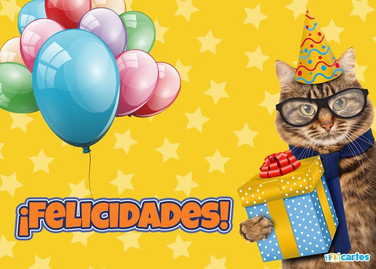 chat avec des lunettes et un chapeau pointu et qui tient dans sa patte une boîte cadeau avec joyeux anniversaire en Felicidades Espagnol