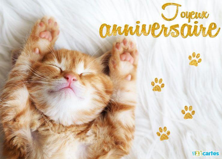 carte anniversaire le chat qui dort