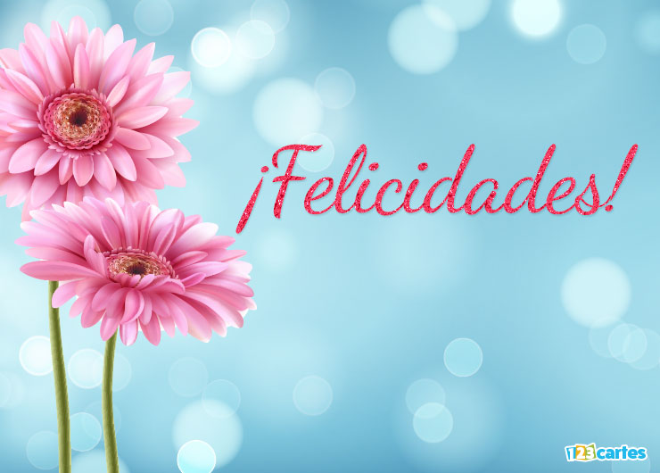 fleur de gerbera rose avec joyeux anniversaire en Felicidades Espagnol
