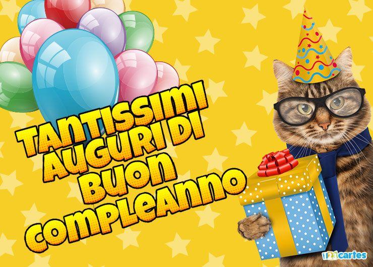 chat avec des lunettes et un chapeau pointu et qui tient dans sa patte une boîte cadeau avec joyeux anniversaire en Italien