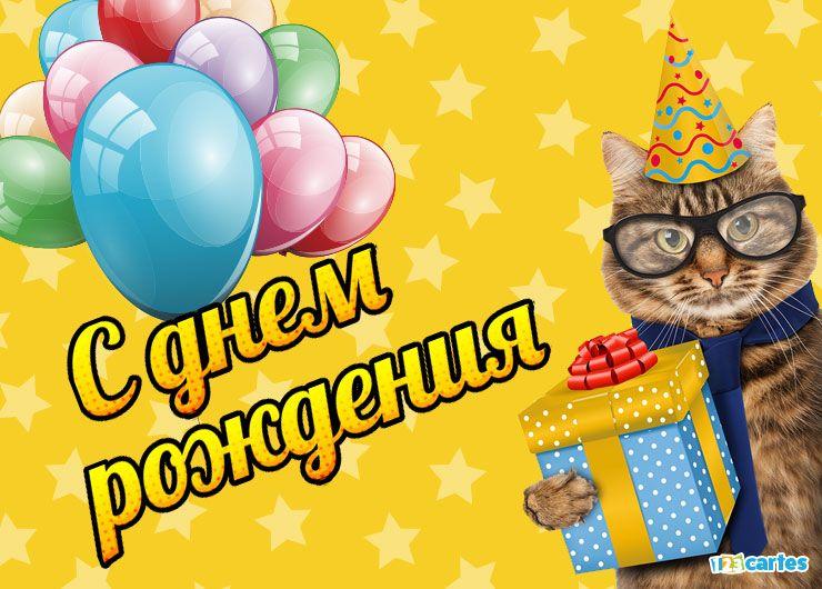 chat avec des lunettes et un chapeau pointu et qui tient dans sa patte une boîte cadeau avec joyeux anniversaire en Russe