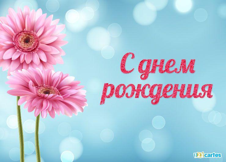 fleur de gerbera rose avec joyeux anniversaire en Russe