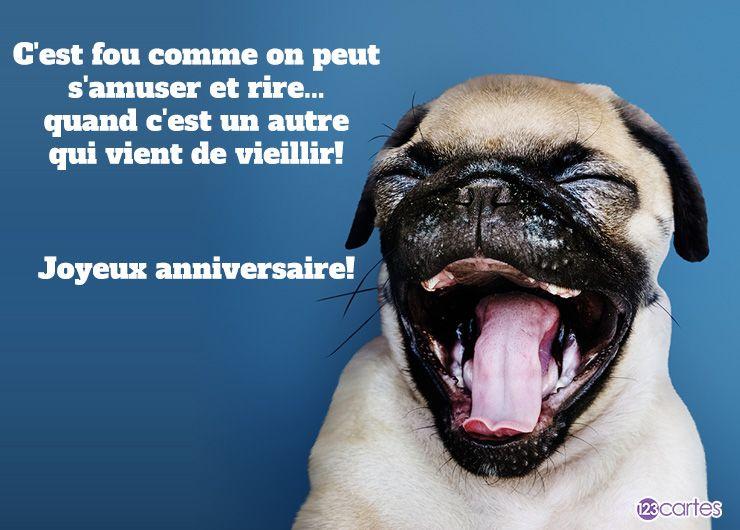 chien à la gueule grande ouverte avec texte drôle pour souhaiter joyeux anniversaire