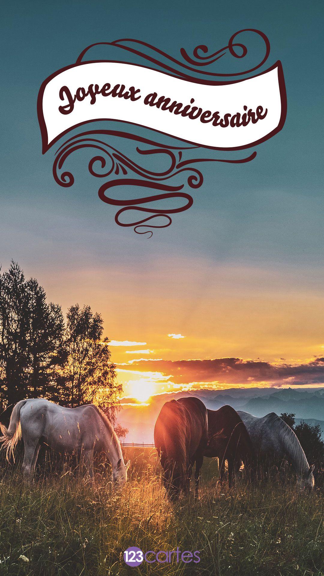 chevaux dans un champ au coucher du soleil