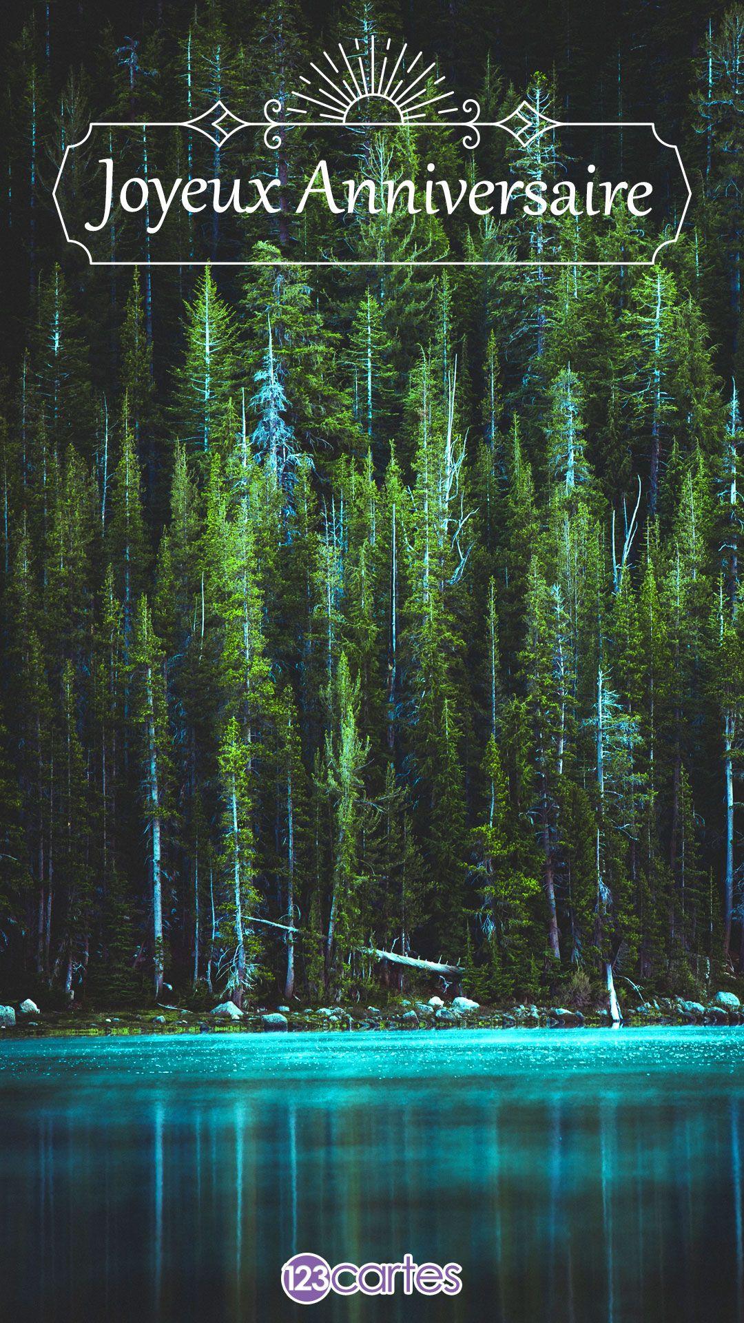 lagon bleu avec des arbres autour