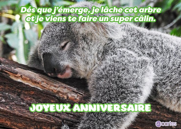 Super câlin – Carte anniversaire