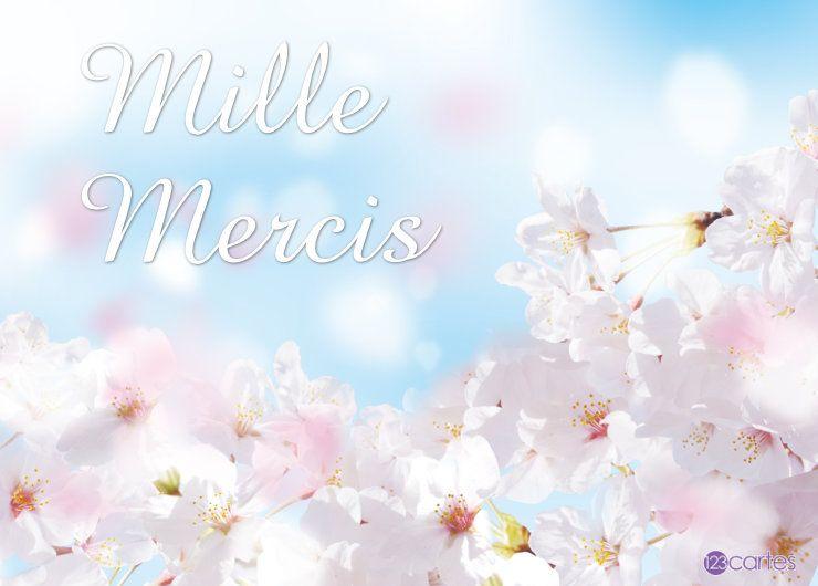 fleurs blanches et le texte mille mercis en grand