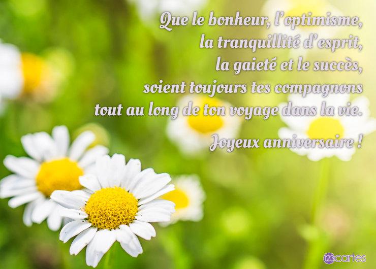 Chrysanthèmes fleurs qui symbolisent l'optimisme et la gaieté avec un joli texte pour souhaiter joyeux anniversaire à sa sa sœur