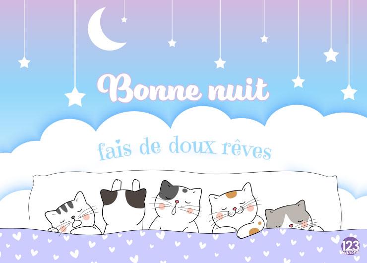chatons qui dorment, nuages, étoiles, lune